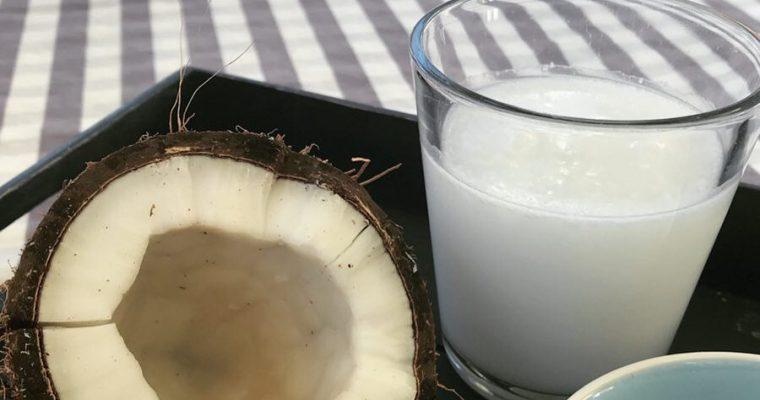 Hemmagjord Kokosmjölkdryck (AIP)